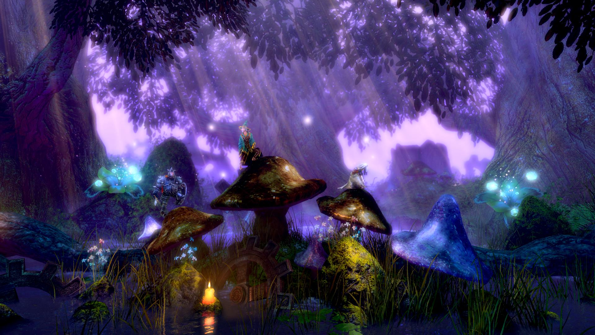 Trine_Enchanted_Edition_Forest1_Mushrooms3